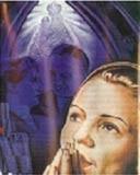 Das Tor zum Frieden - DVD