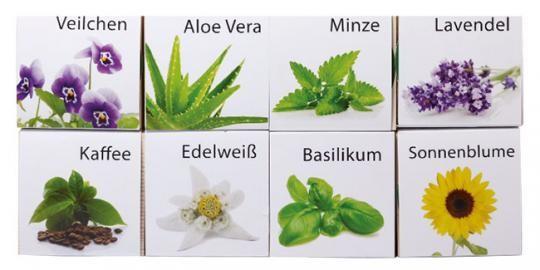 Spar-Päckchen - 4 ecocube Pflanzenwürfel